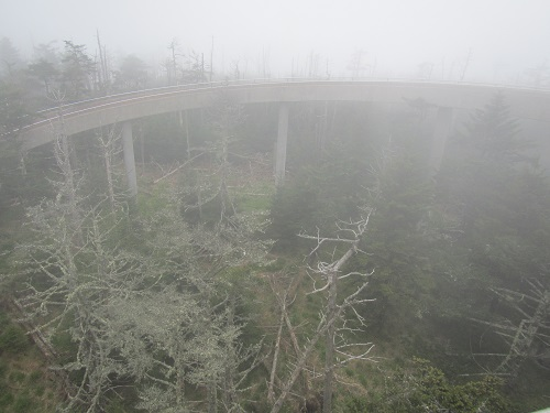 Clingman's Dome Lookout Tower Ramp