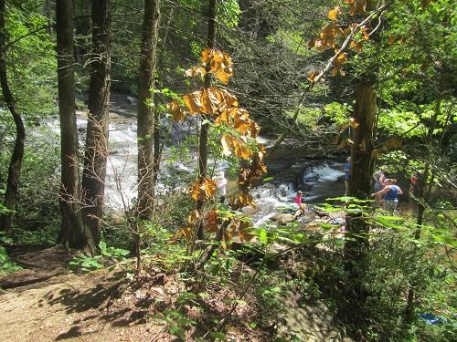 Ledges at Brasstown Falls